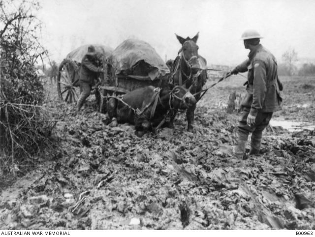 Bringing Supplies up through the mud - E00963